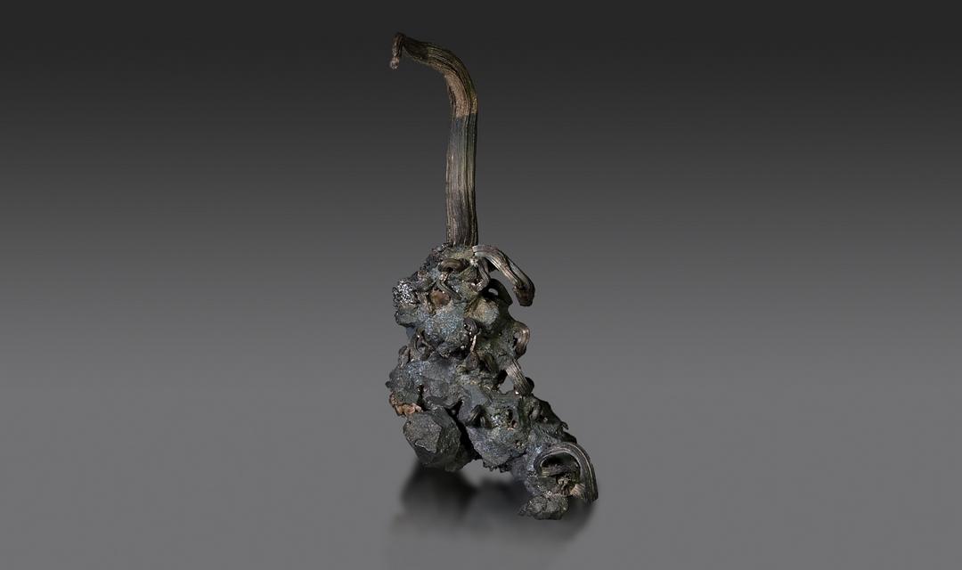 Špičkový kousek stříbra, který se stal chloubou naší galerie